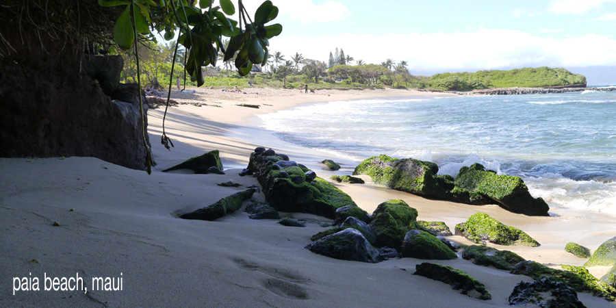 D-beaches135