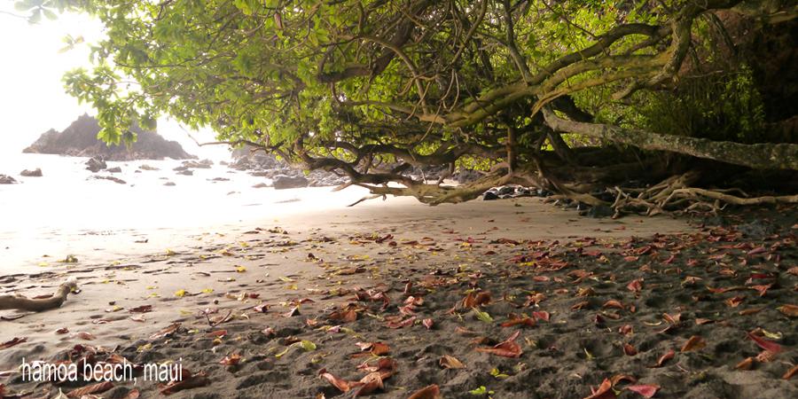 D-beaches151