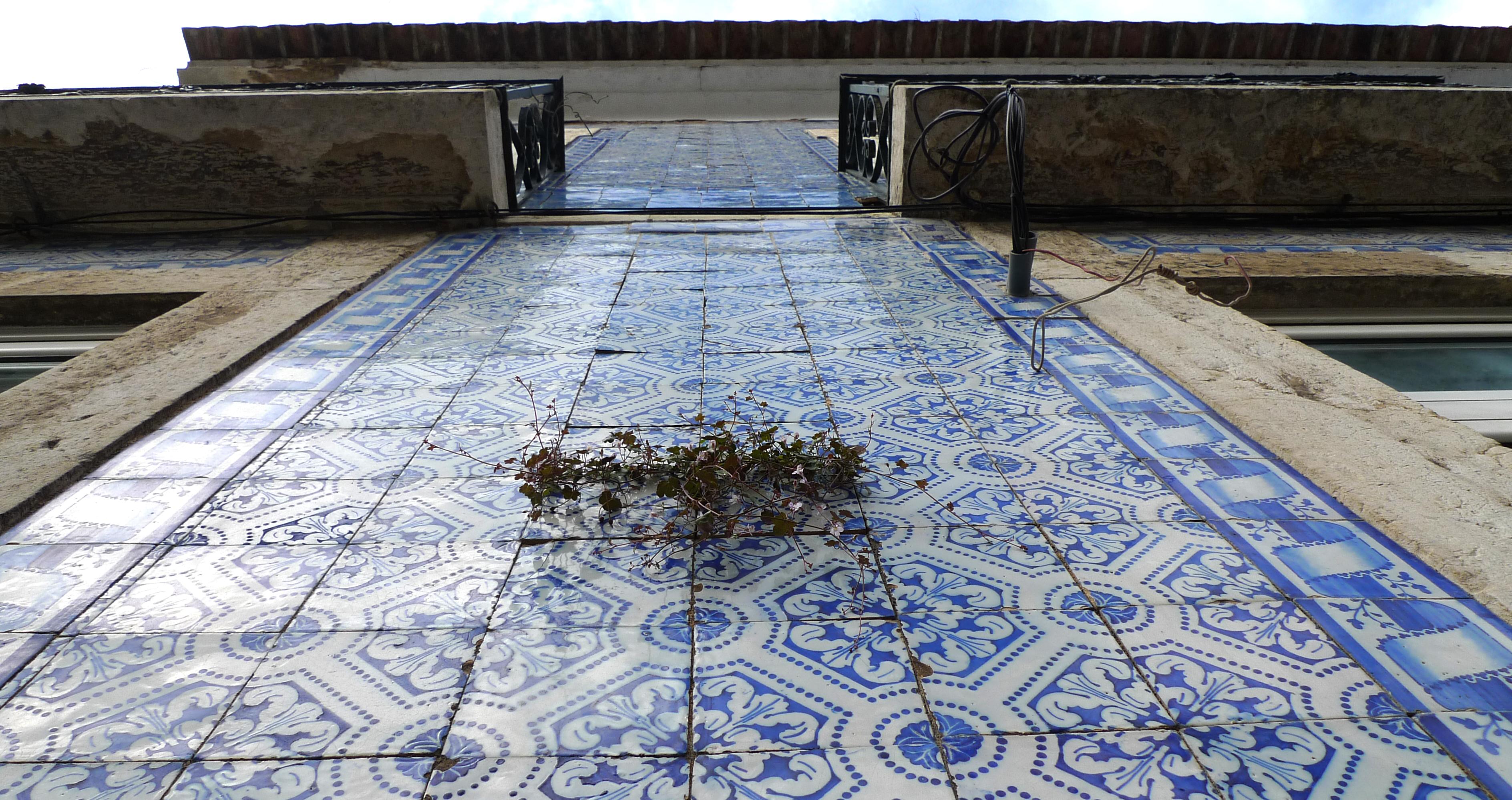 azulejos016